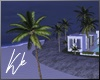 [kk] Palm Tree Anim