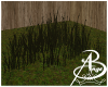 {AB} Swamp Grass