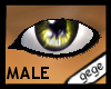 [GG]Male Eyes3