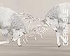 *M* Fighting Deers