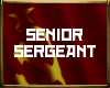 [CCCP] Senior Sergeant