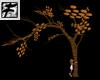 ~F~ Cookie Climbing Tree