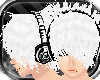 [DITF]White Takachima