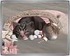 Rus: Luxe kitty
