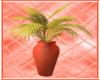 Salon Vase