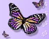 Butterflies Animated