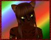 Dark Tiger cat fur F