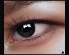 Grace Eye \ Shadow