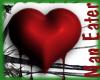 ! bleeding heart (trans)