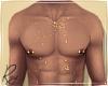 Gold Glitter Torso