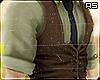 Formal Brown Vest
