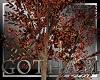 Wayne Manor fall tree 3