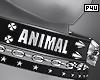 -P- Animal Collar M