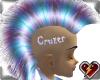 S CruzerHawk