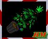 Weed Christmas Tree