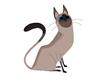 !K69! Cat Stature