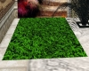 Grass 1 Floor