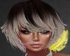 Saggine Hairstyle