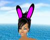 Bunny Ears Anim1