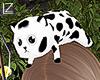 !L Cute Cat+Moo M/F