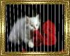 ~D~ Cat Pictures