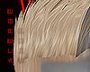 Fz. Remy Blond v1