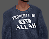PROPERTY OF ALLAH NB