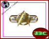 Starfleet Badge 2