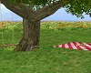 [S] Outdoor Picnic