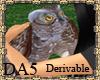 (A) Owl