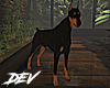 !D Doberman Animated