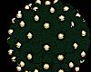 Plant/Lights