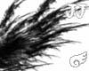 JJ Black Angel Wings