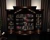 Texas Lounge Book Shelf
