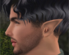 Elven Ears- His