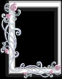 sticker_11376365_15867718