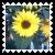 sticker_21920493_47510745