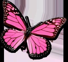 sticker_5770770_10391682
