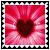 sticker_15836473_28911940