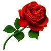 sticker_17083971_47585418