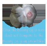 sticker_30676001_47595150