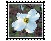 sticker_17637054_30524161