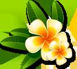 sticker_59644646_22