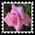 sticker_15836473_45885255